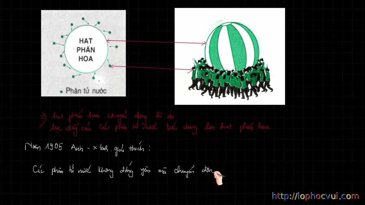 Vật Lí 8 – Chương 2 – Bài 19 Nguyên tử, phân tử chuyển động hay đứng yên – Phần 1 lí thuyết