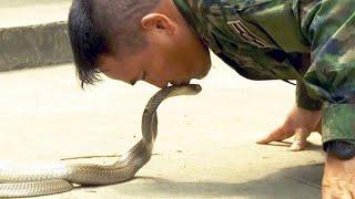 Schlangenblut trinken, Skorpione essen: Dschungeltraining für US-Militärs