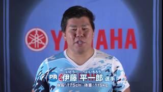 2017~2018年度ラグビートップリーグ ヤマハ発動機ジュビロ 選手の今シ...