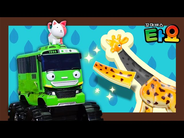 Find my kitty please! l Tayo Mini Game l Tayo the Little Bus