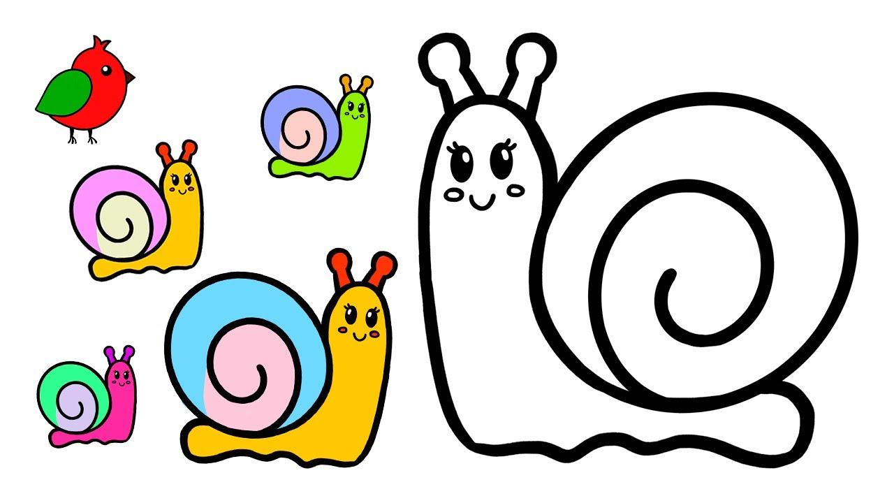 Как нарисовать улитку / Рисунки и раскраски малышам / Мультик раскраска для детей