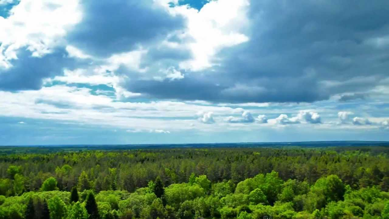 Make 3d Live Wallpaper Time Lapse Belarus Nature Hd Youtube