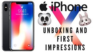iPhone X Unboxing & First Impressions! (256GB) | Does Face ID Suck?!