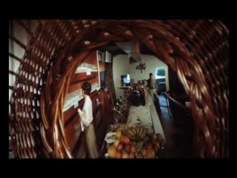 Ich steh an der Bar und habe kein Geld  - BOBBEJAAN (original 1960)