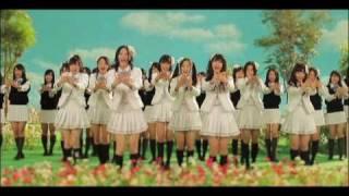 コスモスの記憶 SKE48(AKB48)