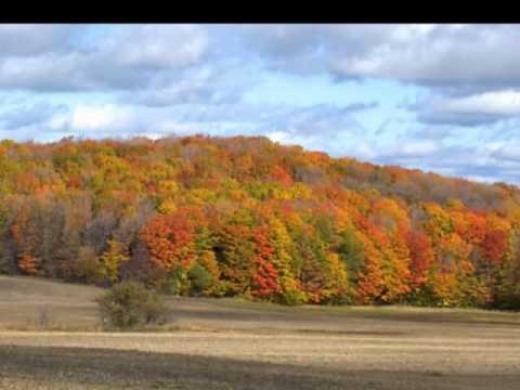 Колекция картинок на тему Осень*