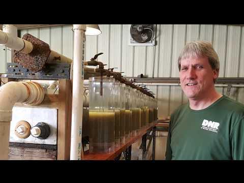 Jeff Malwitz Discusses His Job At Cikana State Fish Hatchery