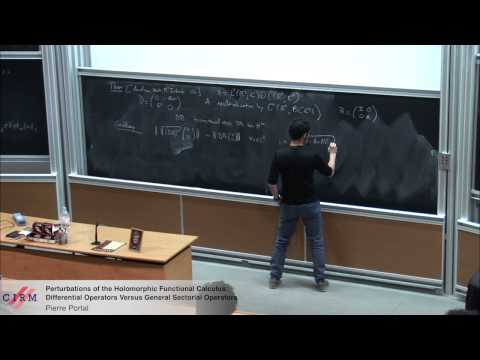Pierre Portal: Perturbations of the holomorphic functional calculus: differential operators [...]