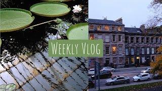 weekly vlog: october autumn, q&a, study