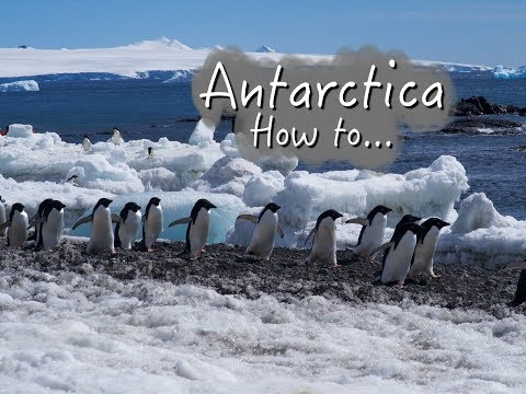 Antarctica How to: Last minute booking, prices, experience...