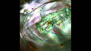 Tasseomancy - Ulalume - 01 - Anubis