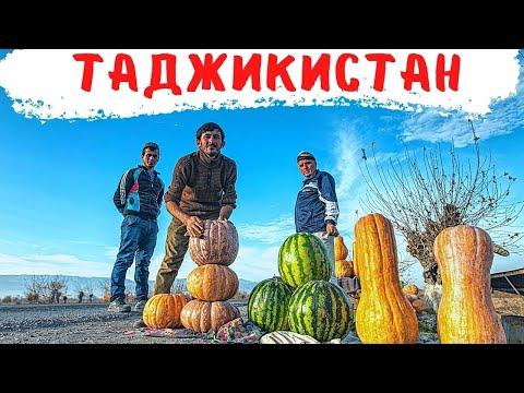 Душанбе. Курган Тюбе.