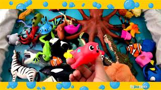Learn Wild Animals for Kids Through Toys and Video || Colors for Kids