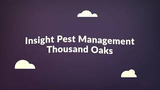 Insight Pest Management - Pest Control in Agoura Hills, CA