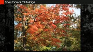 Grace Lake Bemidji Minnesota Lake Home Retreat For Sale