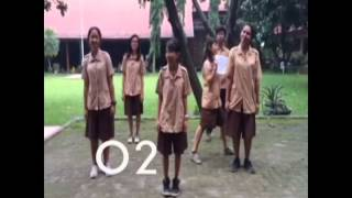 Video Lagu Sistem Respirasi - SMA Pangudi Luhur II Servasius download MP3, 3GP, MP4, WEBM, AVI, FLV Juli 2018