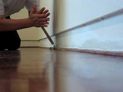 Yoshihiro Suda Exhibition Installation @ The Contemporary Museum 07-07-2009