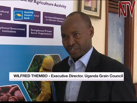 Government launches grain policy