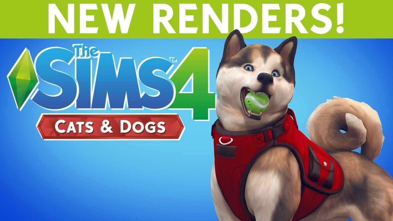 Sims  Cats And Dogs Feature