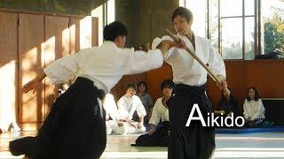 Dynamic Aikido Demonstration 2018 - Shirakawa Ryuji shihan