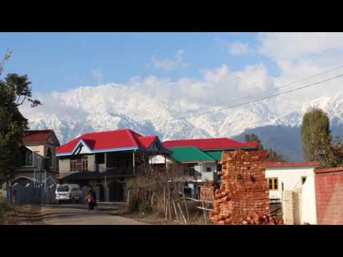 Palampur Travel Guide & Tours | BreathtakingIndia.com