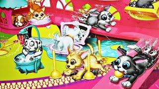 Pet Parade / Akademia Psiaka - 2 Pieski / 2 Dogs - EPEE - EP02227 - MegaDyskont.pl