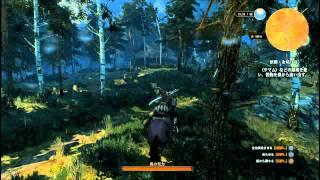 【サマム・硝酸カリウム場所】ウィッチャー3 ワイルドハント (The Witcher 3 Wild Hunt)
