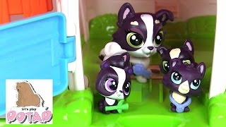 видео Игрушки Литл Пет Шоп (LPS) маленький зоомагазинв Украине, 16 игрушек на странице