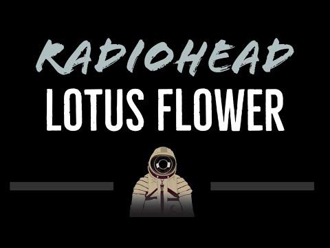 74 mb radiohead lotus flower lyrics free download mp3 radiohead lotus flower cc karaoke instrumental mightylinksfo