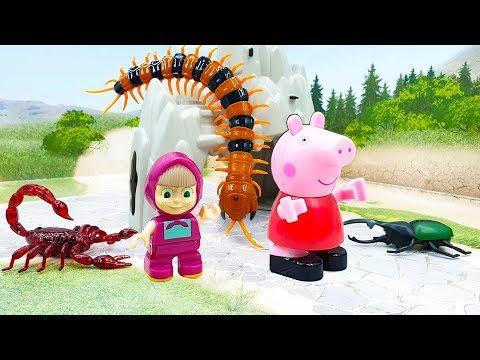 Мультики для детей с машинками и игрушками - Битва за Машу. Развивающие мультфильмы для малышей 2019
