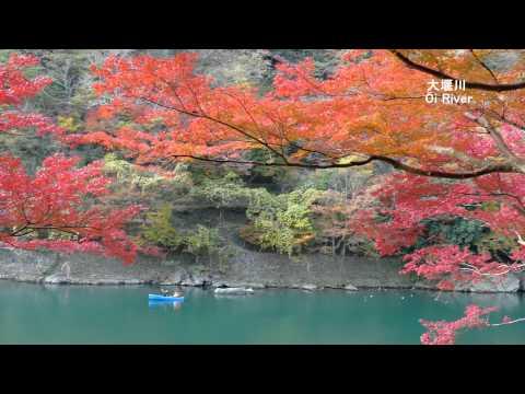 【4K】Autumn Leaves in Kyoto Arashiyama Japan 京都嵐山の紅葉 Panasonic DMC-FZ1000