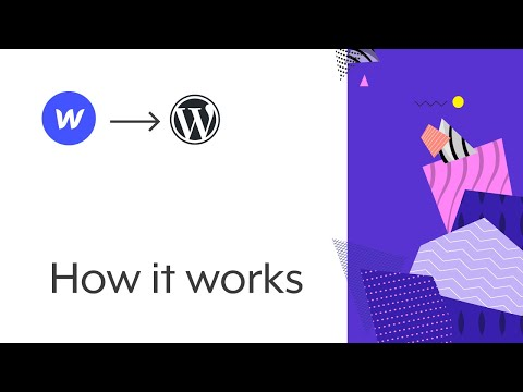 Create a WordPress/WooCommerce Theme with Webflow | How the Udesly Adapter works for WordPress