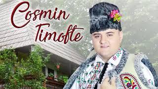 Cosmin Timofte - Multe-s date omului (album preview)