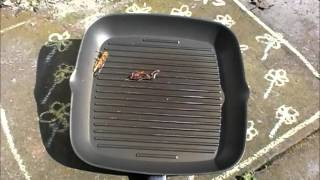 "Insect burgers & ""the giant transparent locust frying pan"".  People eating insect burgers!"