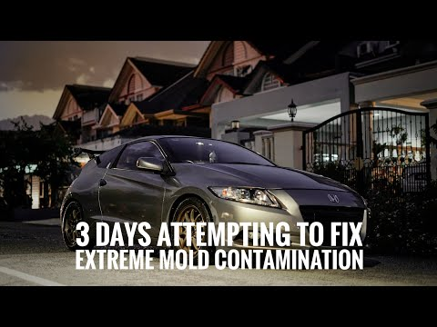 Honda CRZ Total Mold Removal // Sony A7iii Cinematic
