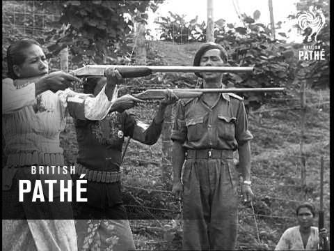 Baixar Malayan Women Home Guards (1954)