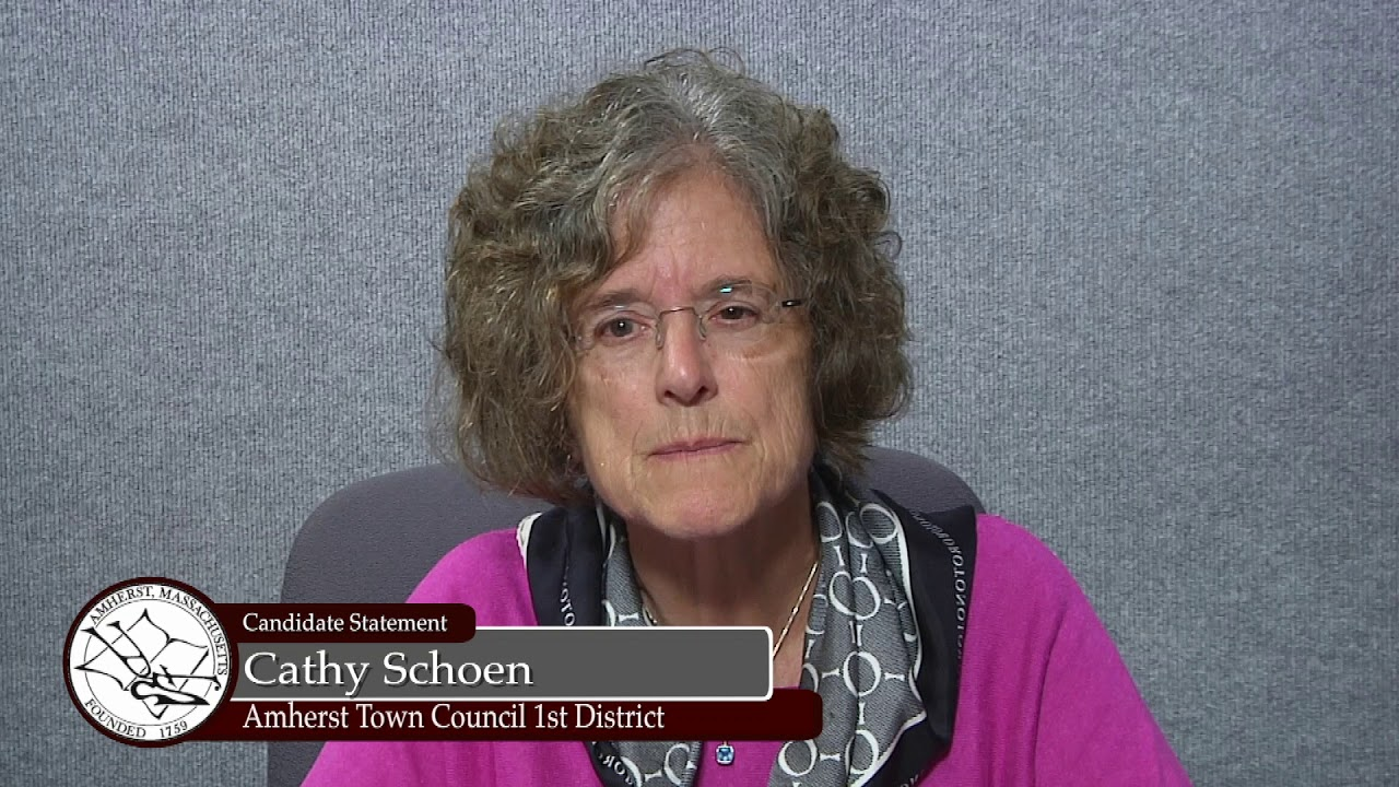 Cathy Schoen District 1 Town Council Candidate Statement 2018