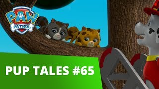 PAW Patrol | Pup Tales #65 | Rescue Episode! | PAW Patrol Official & Friends