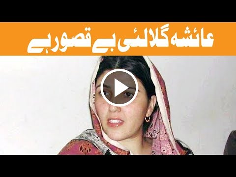 Corruption allegations against Ayesha Gulalai lack substance - NAB -  Headlines 12 PM - 14 Sep 2017