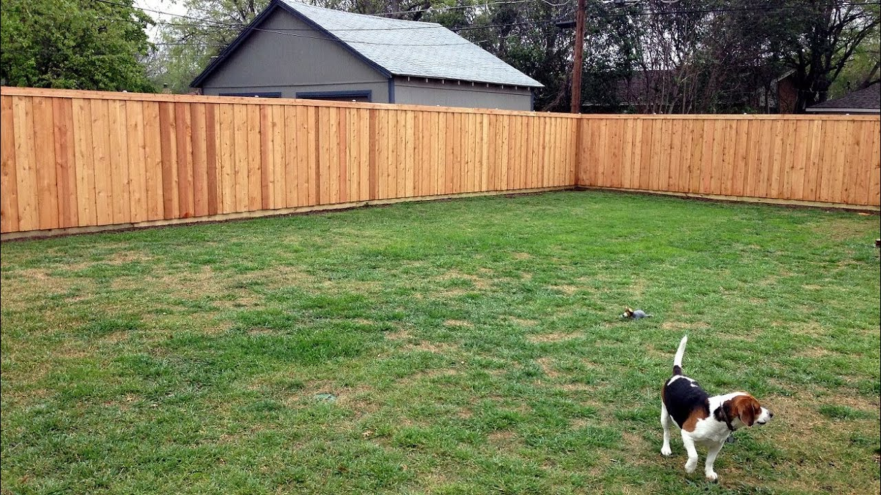 Our Adventure Building A Western Red Cedar Privacy Fence