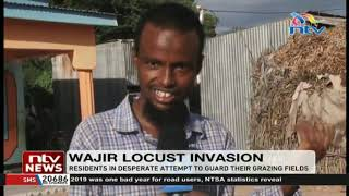 Wajir residents call on National, County Govt. to aid in dealing with locust invasion