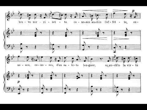 Quel guardo il cavaliere (Don Pasquale - G. Donizetti) Score Animation