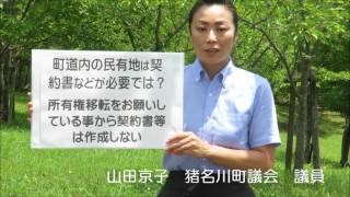 猪名川 町道内の民有地について