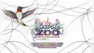 Axwell Live at Electric Zoo 2012 New York City Liveset Recap Aftermovie Post Event