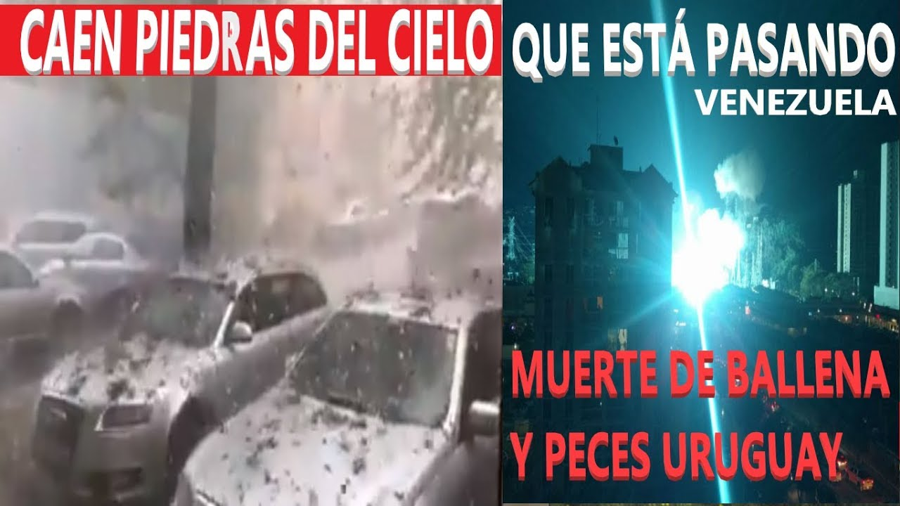 Última Hora: Lluvia de Piedras Rumanía /Animales Sin vida en Playas / Reporte Sísmico