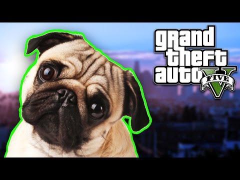 CARLI JE POLUDEO ! Grand Theft Auto V