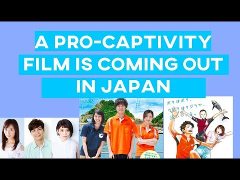 Japan's New Propaganda Pro-Captivity Movie Is Coming Out Soon