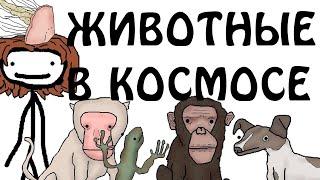 """""""Животные в космосе"""" - Академия Сэма О'Нэллы (Русская Озвучка Broccoli)"""