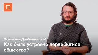 Социальная структура у древних людей ― Станислав Дробышевский
