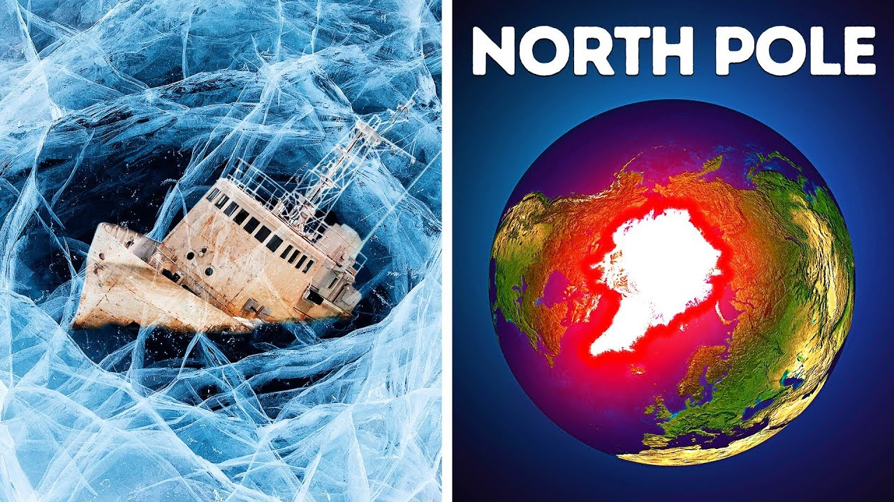 Warum niemand am Nordpol überleben kann + video